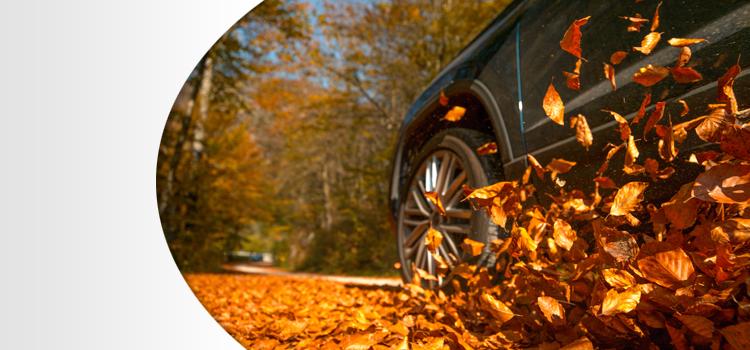 10 tips om in de herfst goed voorbereid op weg te gaan